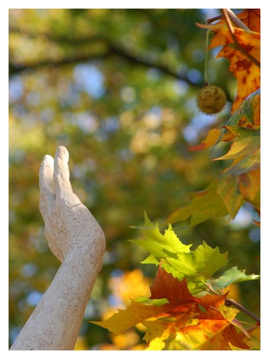 FIL ROUGE : Les sculptures Chataigne